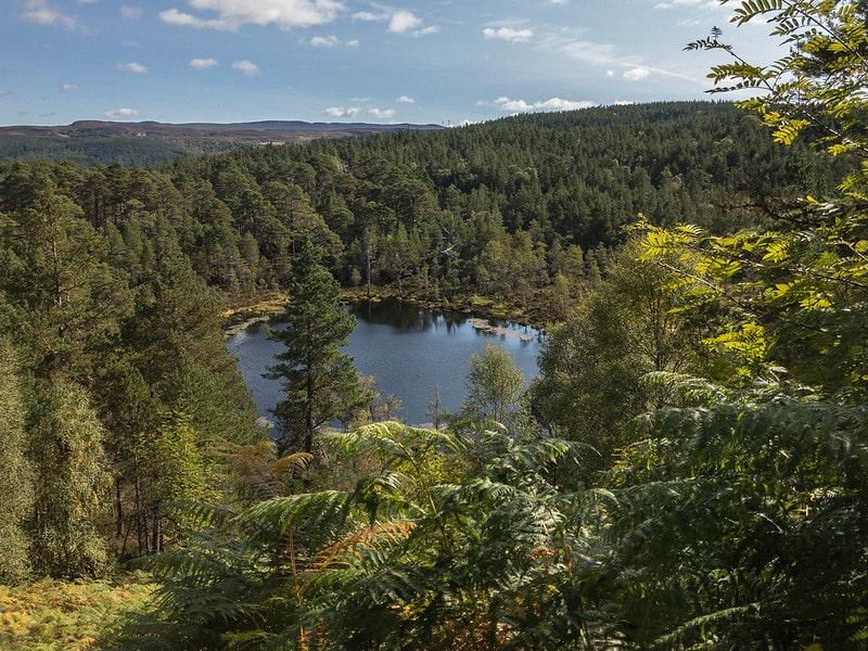 Glen Affric, Scotland, Scozia